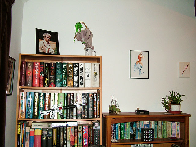 A wider shot on my favourite book shelves.